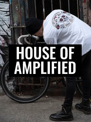 Image for House of Amplified